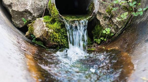 Circolare n.2: Uso agricolo degli effluenti di allevamento, acque reflue