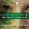 Comune Napoli,formazione per 15 giovani NEET pronti a mettersi in gioco